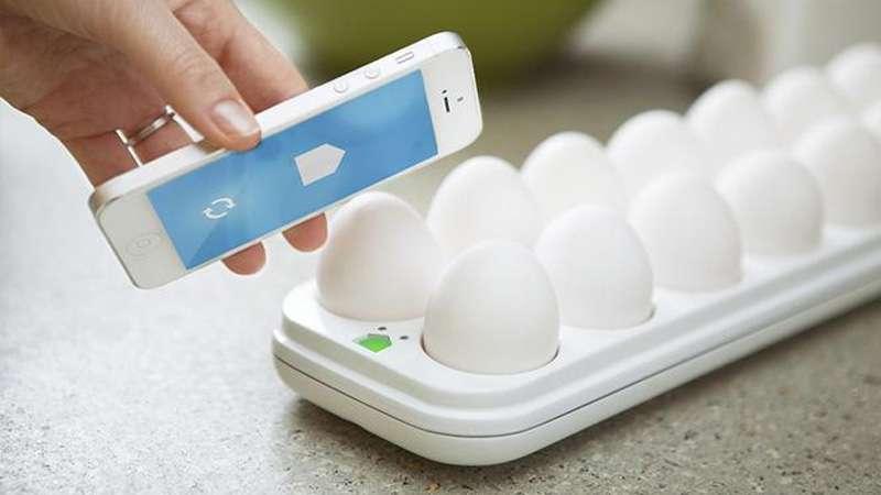 Egg Minder UNE