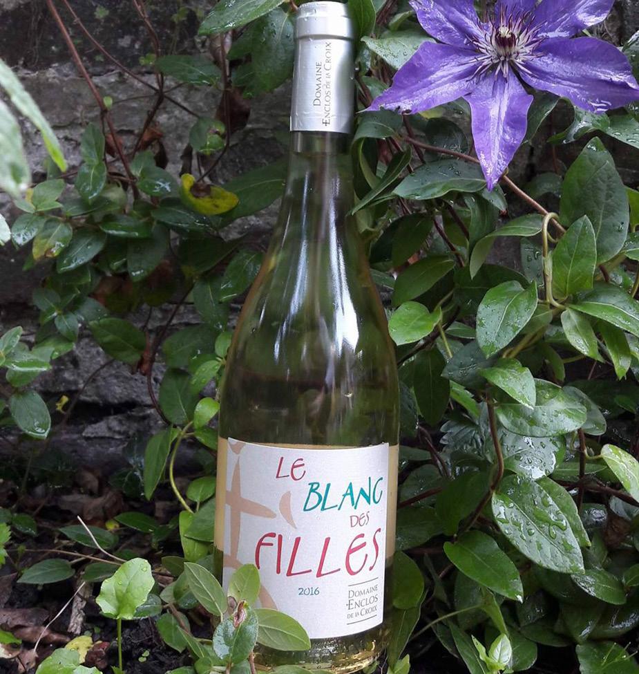 Découvrez Le Blanc des Filles 2016, sélection Bazar par Mon Vin Chez Vous. Finesse, originalité et consistance caractérisent ce Blanc de Noir 100% Merlot.